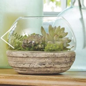 Other - Round glass with cement base terrarium